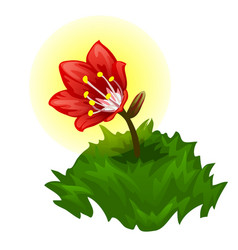 Growing a glowing red magic flower vector