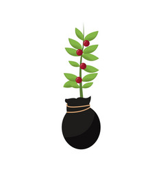 plant in a pot icon vector image vector image