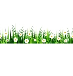 Green grass seamless vector