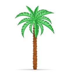 Palm tree 02 vector