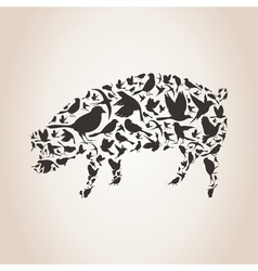 Pig from birds vector