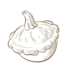 Picture of bush pumpkins vector