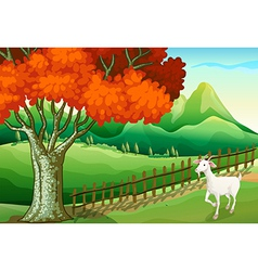 A white goat near the big tree vector image vector image