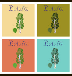 assembly of flat plant betula vector image