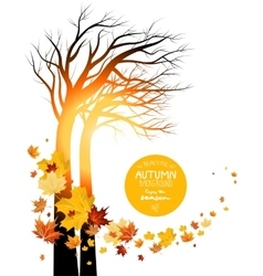 Autumn leaves and silhouette of a tree vector image
