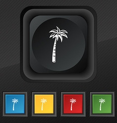 Palm icon symbol set of five colorful stylish vector