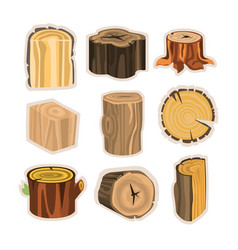 set of different stump trees wooden materials vector image