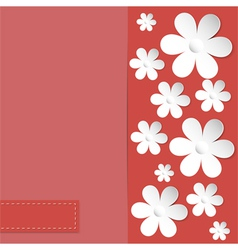 camomile coral background vector image vector image