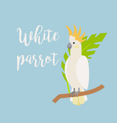 exotic tropical bird white parrot vector image