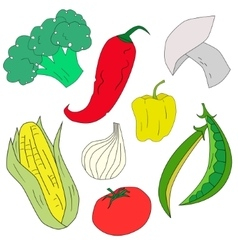 Green vegetables healthy food vector image vector image