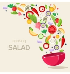 Cooking salad vector