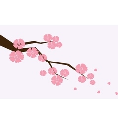 Branch of sakura with flowers cherry blossom vector