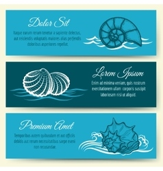 Seashell frame banners vector image vector image