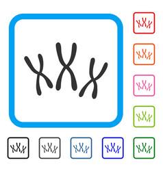 Chromosomes framed icon vector