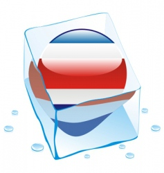 costa Rica button flag vector image