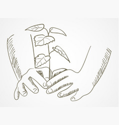 line art of hands planting the tree vector image vector image