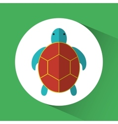 Tortoise cartoon over circle icon graphic vector