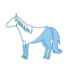 Horse animal mammal nature equine icon vector