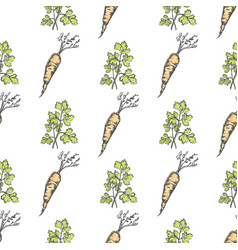 Healthy carrot and parsley sprig seamless pattern vector