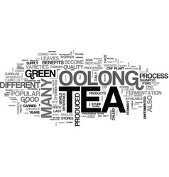 A beginners guide to oolong tea text word cloud vector