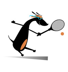 Dog playing tennis isolated vector