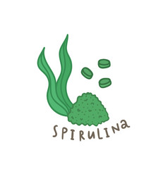 spirulina powder superfood vector image