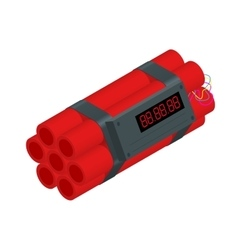TNT time bomb explosive with digital countdown vector image
