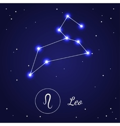 Leo zodiac sign stars on the cosmic sky vector