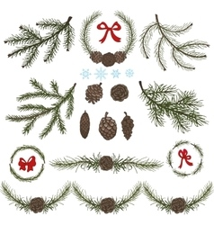 Spruce branches with Pine conesred bow set vector image