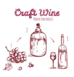 craft drink hand drawn concept vector image vector image