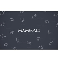 Mammals thin line icons vector