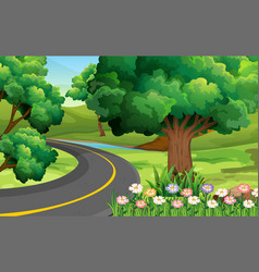 Road in the park vector