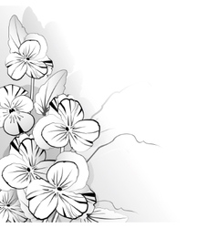 Pansy in black and white vector
