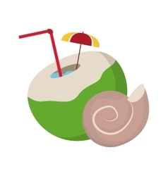Coconut cocktail and conch icon vector