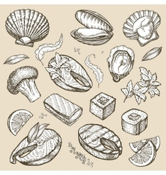 Hand drawn sketch set seafood vector