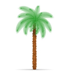 Palm tree 03 vector