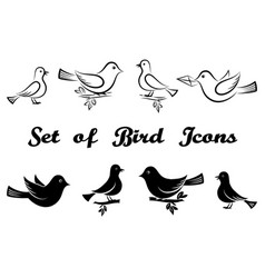 set of bird icons vector image vector image