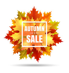 Autumn sale with leaf fall vector image
