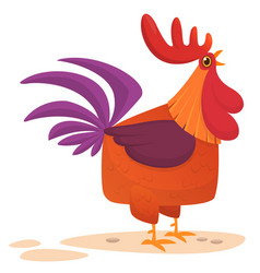 fat cartoon rooster vector image