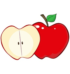 Whole and cut red apple vector