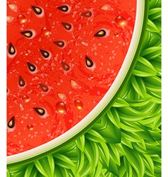 Optical watermelon background pattern vector