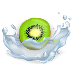 Green slice of kiwi fruit in water splash closeup vector