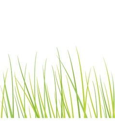 Grass - design element vector image