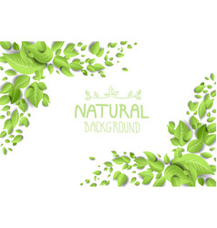 Backdrop with green leaves vector