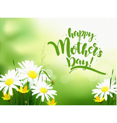 mothers day greeting card with daisy vector image