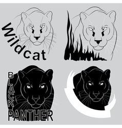 Stylish logo black panther vector