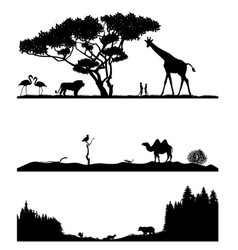 Taiga desert and savannah vector