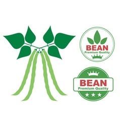 Bean vector image