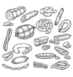 Sketches of sausage and wurst meat products vector