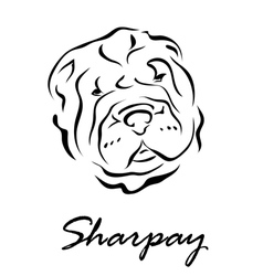 Sharpay vector
